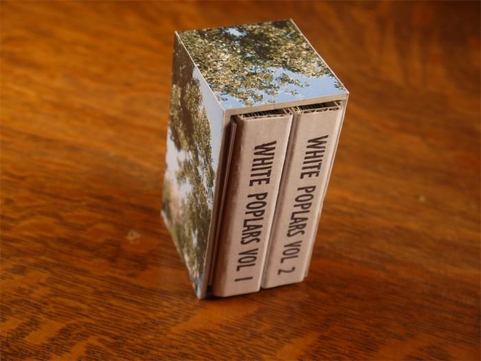 White Poplars - John Dilnot (3)