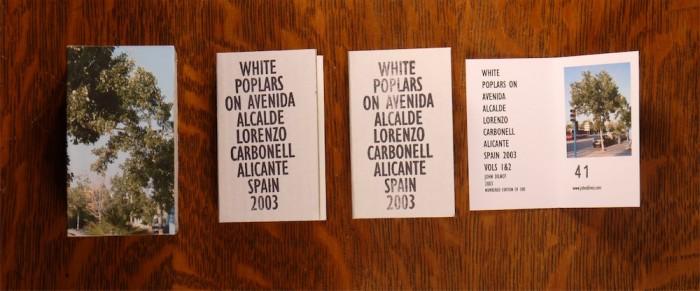White Poplars - John Dilnot (1)