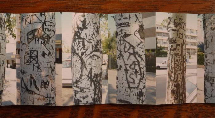 White Poplars - John Dilnot (7)