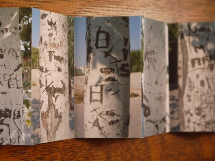 White Poplars - John Dilnot (5)