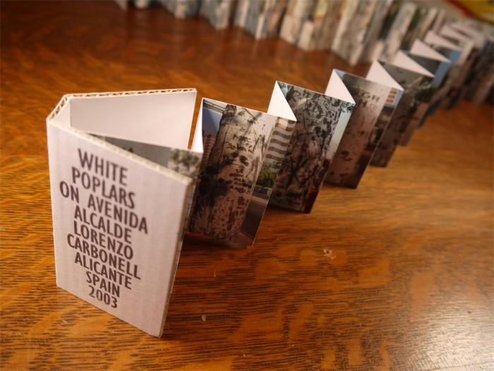 White Poplars - John Dilnot (6)
